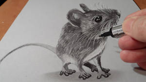 Drawing Mouse 3D