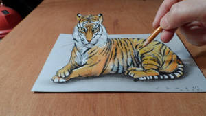 3D Drawing Tiger