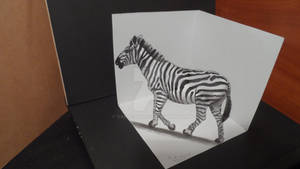 Drawing 3D Zebra, Trick Art on Paper
