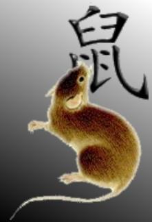 Zodiac Rat by Mikando
