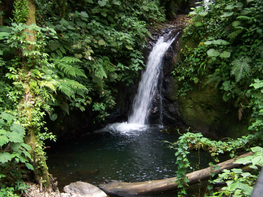 waterfall in costa rica by mandykat