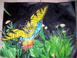 Butterfly painting by mandykat