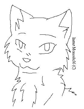 Lineart Cat Head 297467275