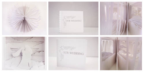 360 Degree Book- Our Wedding