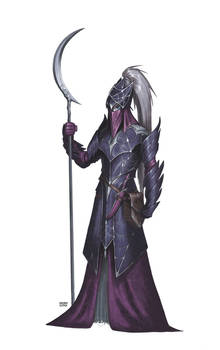 Drow Temple Guard