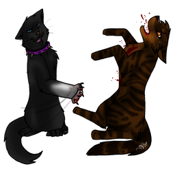 Scourge vs. Tigerstar:.:F.VIEW by Emerald-Eden
