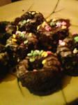 Tiny chocolate snack cakes