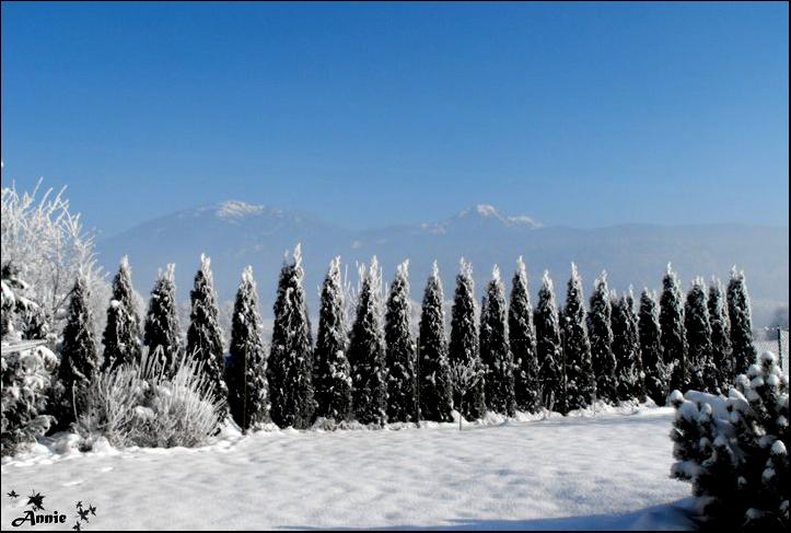 Snowland by AnnieWay8