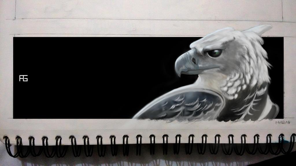 Aguila Arpia by OCaicedo