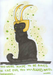 Loki cat