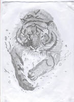 Tiger in Water by Caranth