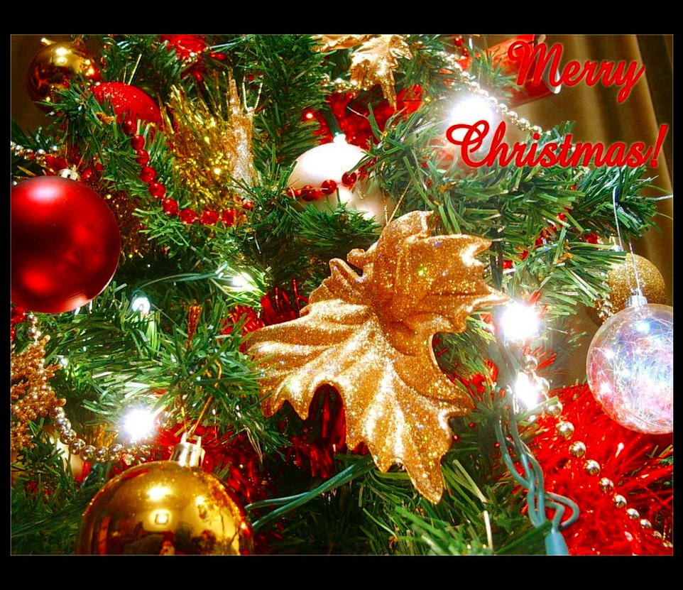 Merry christmas by forestina fotos on deviantart for Merry christmas bilder