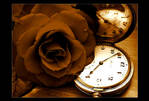 Flower Time 2