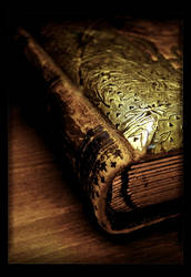 Book of the Ancients by Forestina-Fotos