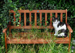 Her Favourite Bench