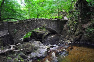 Woodland Bridge by Forestina-Fotos