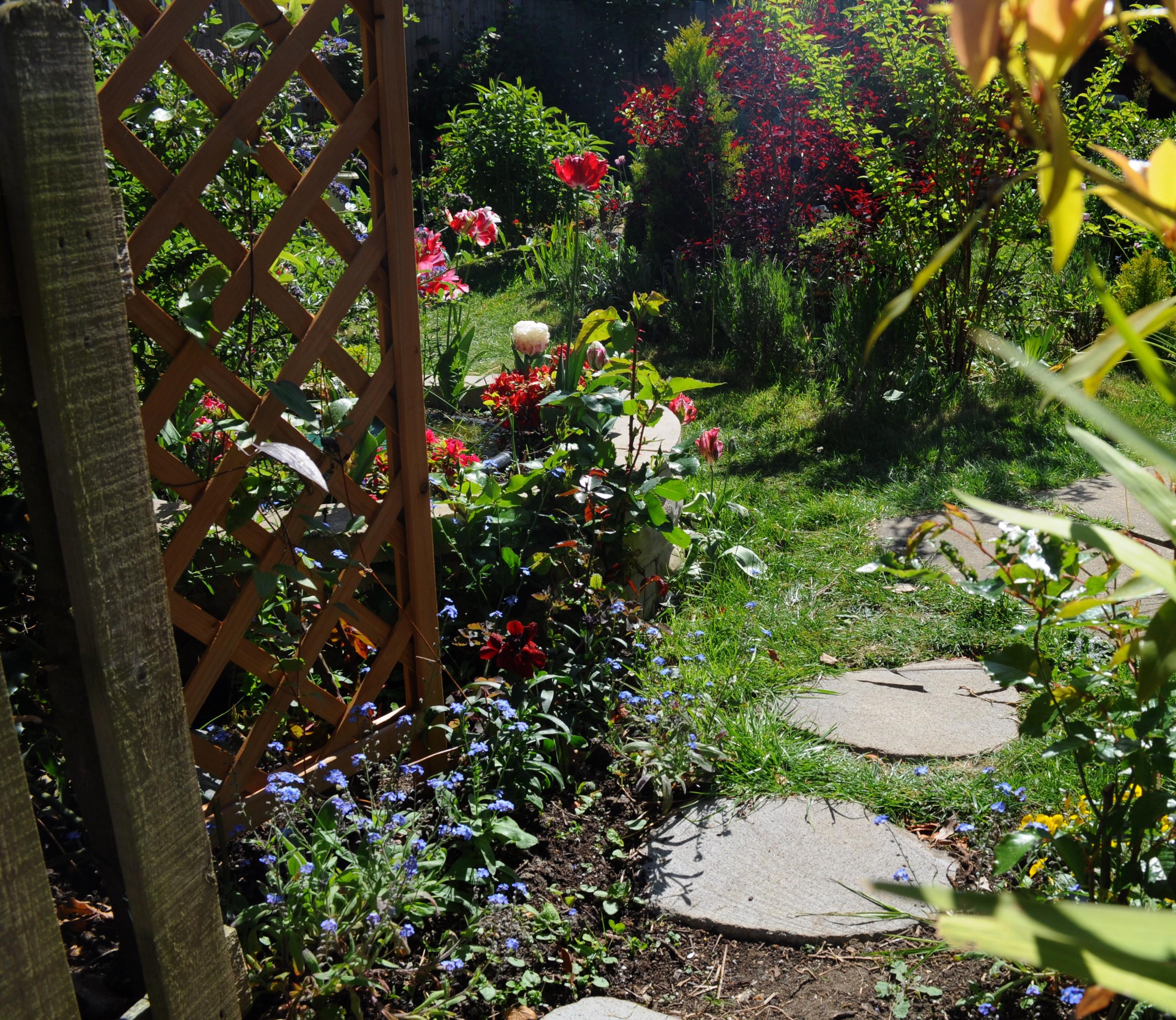 Beyond The Garden Gate By Forestina Fotos On Deviantart