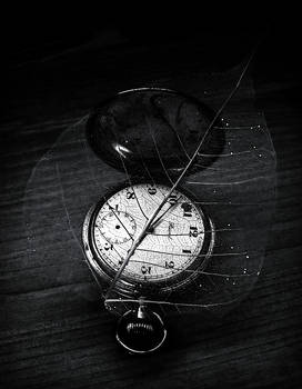 The Fragility Of Time
