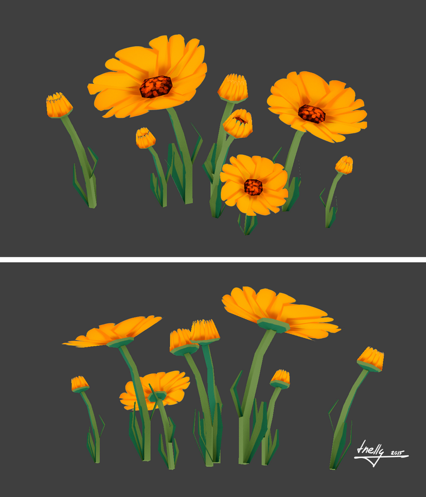 Marigolds by T-Nelly