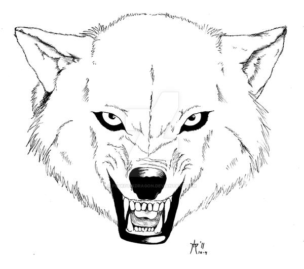 Wolf attack drawing