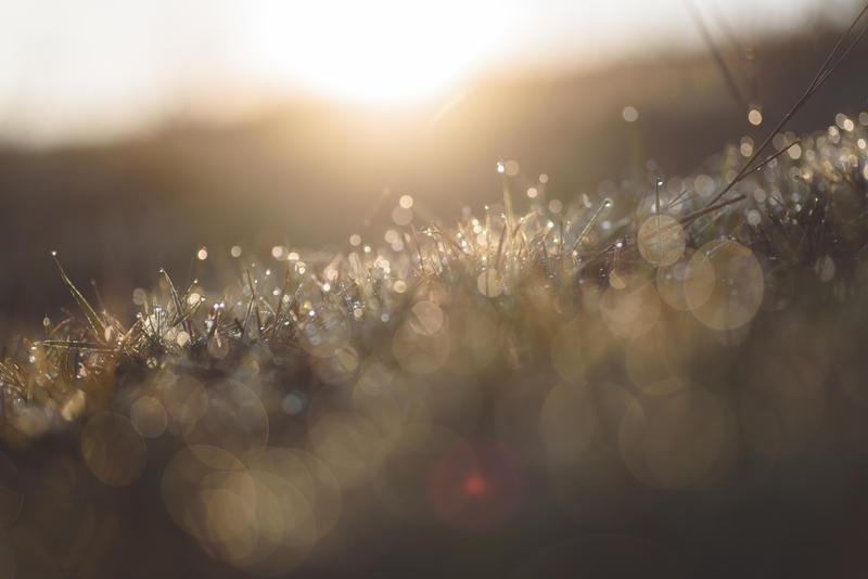 Sun rise by MadManTnT