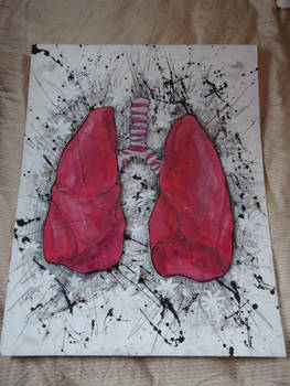 .Lungs