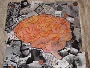 .Brain