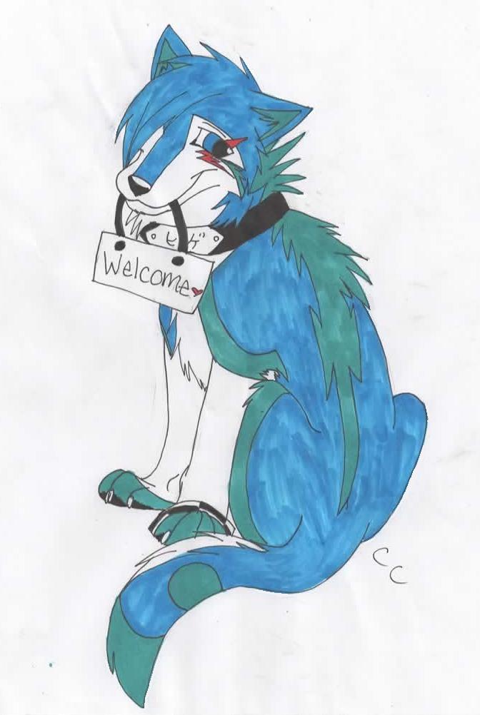 Welcome by Baltowolfdoglover