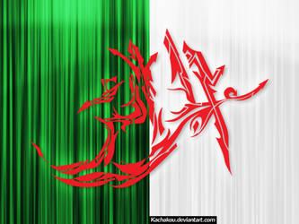 Algeria Flag Graff by kachakou