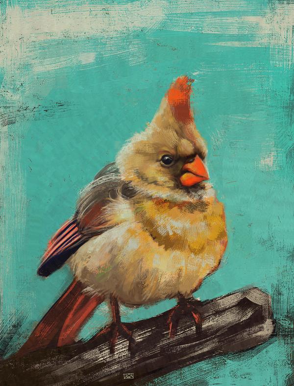 Cardinal bird by Disastrata