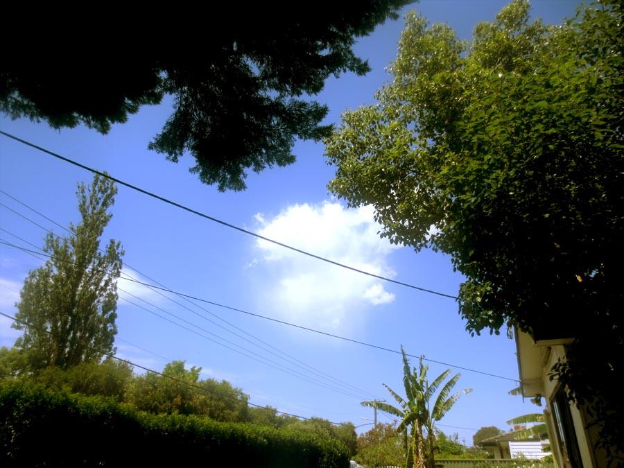 The Trolling Cloud by LAS-T