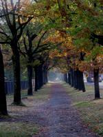 Autumn 2012. by MASYON