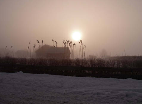 MORNING IN PAPSAARE