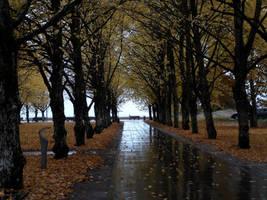 Autumn 71 by MASYON
