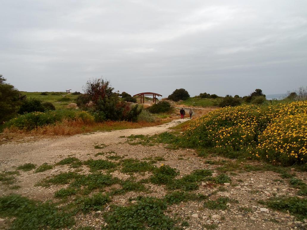 Kourion 185 by MASYON