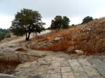 Kourion 241
