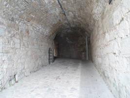 Passage 87