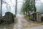 Cemetery 646 by MASYON
