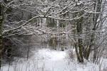 Winter 107
