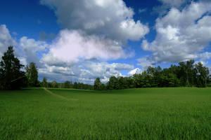 Landscapes 916 by MASYON