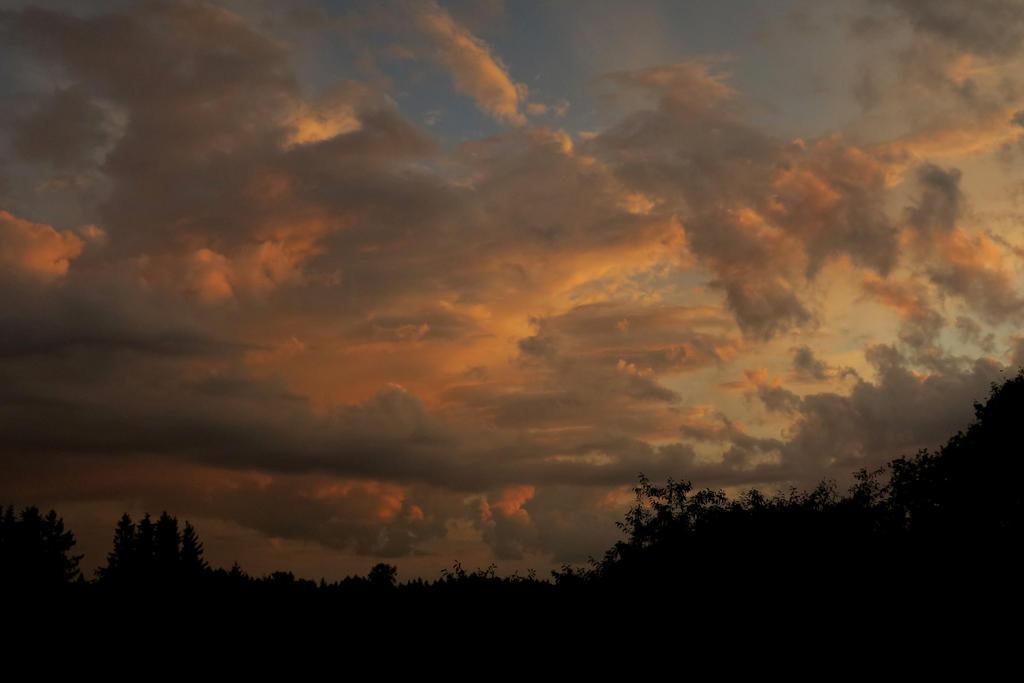 SKY by MASYON