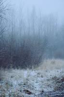 Moisakula winter 30 by MASYON