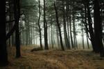 Estonian nature 150