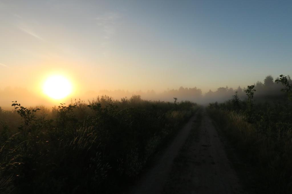 Fog in Moisakulsa 27 by MASYON