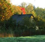 Autumn 467