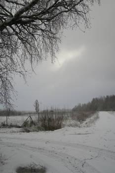 Winter 163