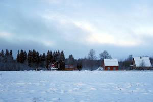 Moisakula winter 434