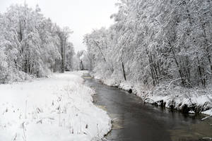 Winter 275 by MASYON