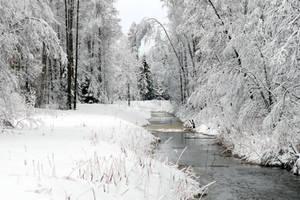 Winter 276 by MASYON