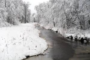 Winter 277 by MASYON